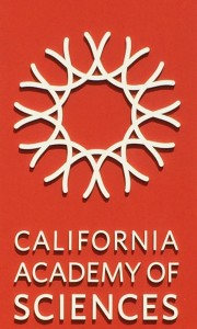 (VUSA) Day 13: California Academy of Sciences